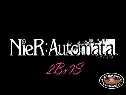 Nier: Automata 2Bx9S.