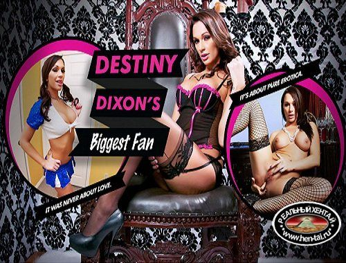 Destiny Dixon''s Biggest Fan (2017/PC/ENG)