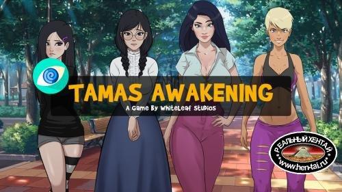 Tamas Awakening [  v.0.06b ] (2020/PC/ENG)