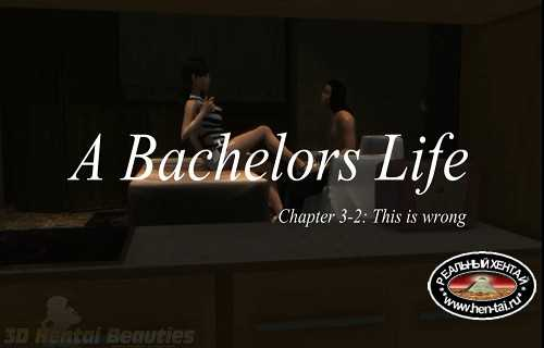 A Bachelors Life - This Is So Wrong